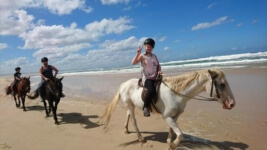Seals Backpackers - Papiesfontein Beach Horse Rides2