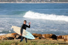 Seals Backpackers - Surfing7